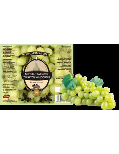 Koncentrat winogrono białe - 1 - Strona główna