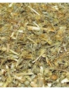 Piołun ziele susz - 50 g
