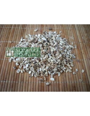 Arcydzięgiel korzeń - 50 g - 1 - Gorzelnictwo i destylacja